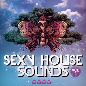 Sexy House Sounds, Vol. 3