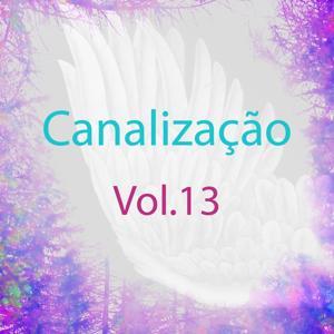 Canalização, Vol. 13