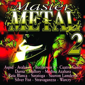 Master Metal, Vol. 2
