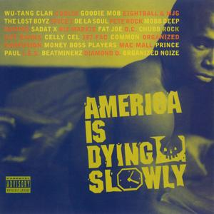 America Is Dying Slowly