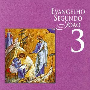 Evangelho Segundo João, Vol. 3