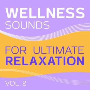 Wellness (Sounds for Ultimate Relaxation, Vol. 2)