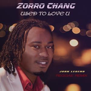 Used to Love U (Reggae Mix)