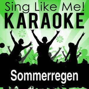 Sommerregen (Karaoke Version)
