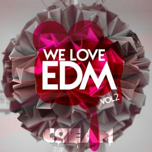 We Love EDM, Vol. 2