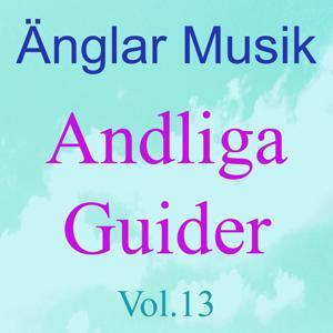 Änglar Musik, Vol. 13 (Andliga guider)