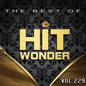 Hit Wonder: The Best of, Vol. 229