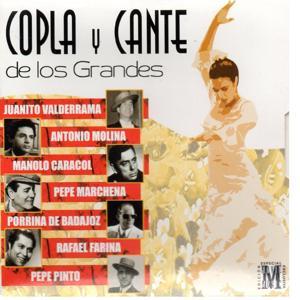 Copla y Cante de los Grandes, Vol. 6