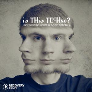 Is This Techno?, Vol. 16