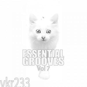 Essential Grooves, Vol. 7