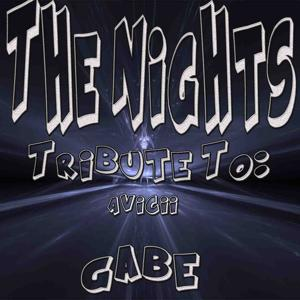 The Nights: Tribute to Avicii