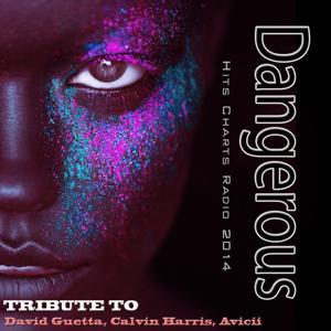 Dangerous: Tribute to David Guetta, Calvin Harris, Avicii (Hits Charts Radio 2014)
