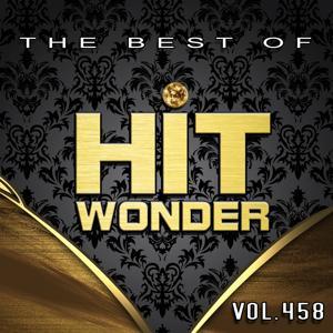 Hit Wonder: The Best Of, Vol. 458
