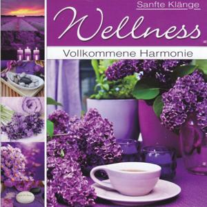 Wellness - Vollkommene Harmonie