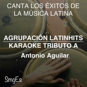 Instrumental Karaoke Series: Antonio Aguilar