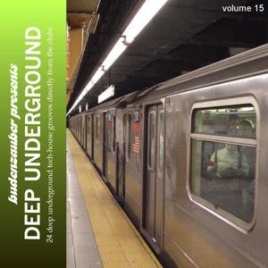 Budenzauber Pres. Deep Underground, Vol. 15