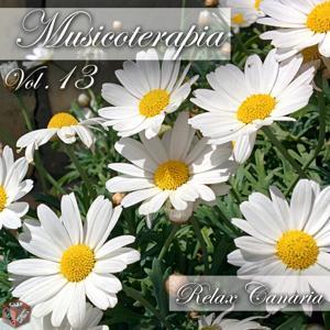 Musicoterapia, Vol. 13 (Momento relax)