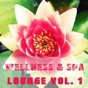 Wellness & Spa Lounge, Vol. 1