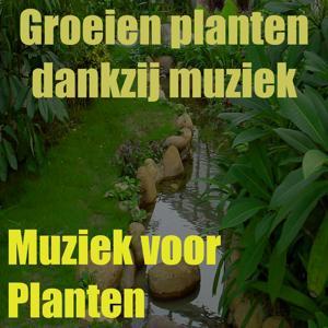 Muziek Voor Planten (Groeien Planten Dankzij Muziek Vol. 15)