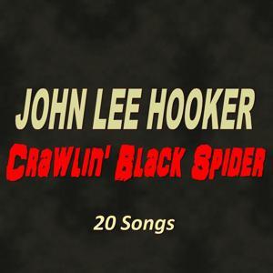 Crawlin' Black Spider (20 Songs)