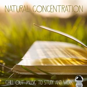 Natural Concentration (Chill Out Music to Study and Work)