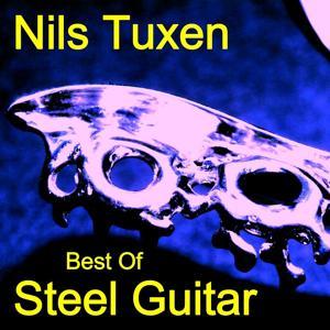 Best Of Steel Guitar