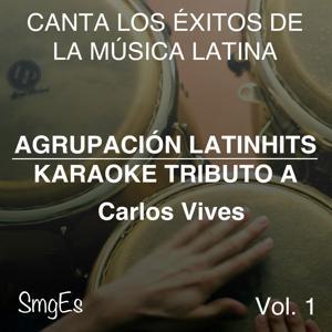 Instrumental Karaoke Series: Carlos Vives, Vol. 1