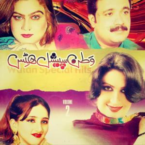 Watan Special Hits, Vol. 2