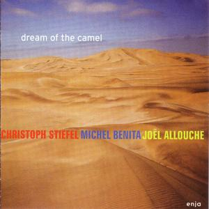 Dream of the Camel