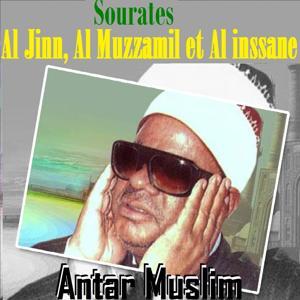 Sourates Al Jinn, Al Muzzamil Et Al Inssane (Quran)