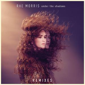 Under The Shadows Remixes