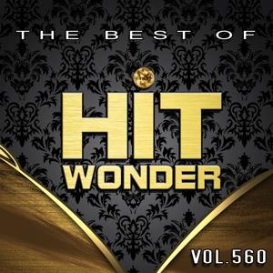 Hit Wonder: The Best Of, Vol. 560