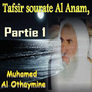 Tafsîr sourate Al Anam, Partie 1 (Quran)