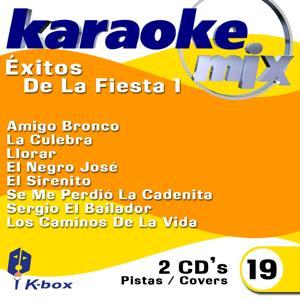 Exitos De La Fiesta 1 (Karaoke/Cover Version)