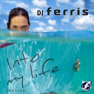 Into My Life Remixes