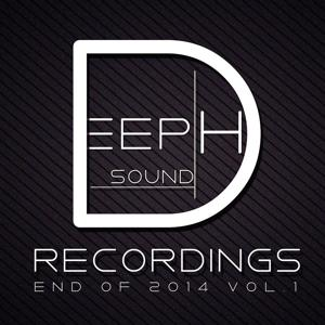 Deephsound Recordings - End of 2014 Vol. 1