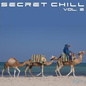 Secret Chill - Vol.2