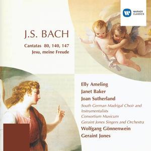 Cantatas - Bach