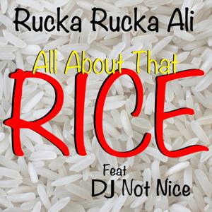 All About That Rice (feat. DJ Not Nice)
