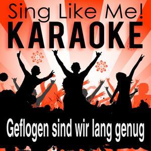 Geflogen sind wir lang genug (Karaoke Version)