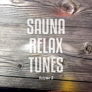 Sauna Relax Tunes, Vol. 2 (Relaxing Chillout Tunes For Recovering And Meditation)