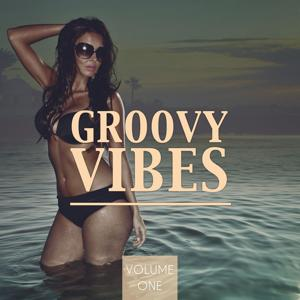 Groovy Vibes, Vol. 1 (Amazing Electronic Dance Music)