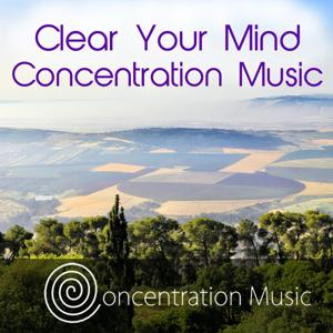 Clear Your Mind Concentration Music - Focus and Improve Results
