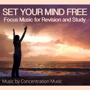 Set Your Mind Free - Focus Music for Revision and Study