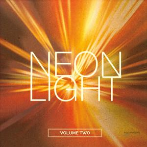Neonlight, Vol. 2 (Electronic Flavored House Music)