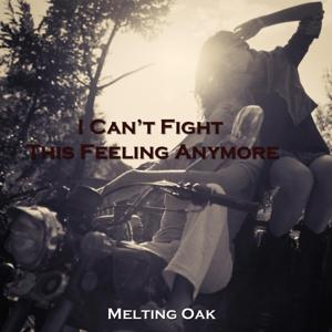 I Can't Fight This Feeling Anymore