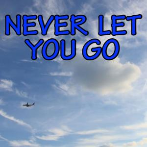 Never Let You Go - Tribute to Rudimental