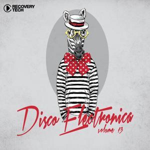 Disco Electronica ,Vol. 13