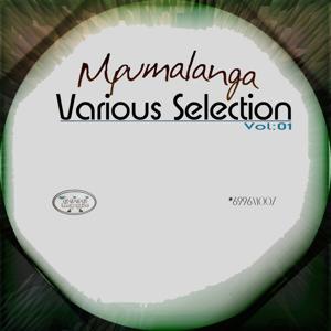 Mpumalanga Various Selection, Vol. 1