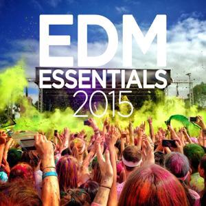 EDM Essentials 2015